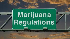 FBMJ-Medical-Marijuana-Article